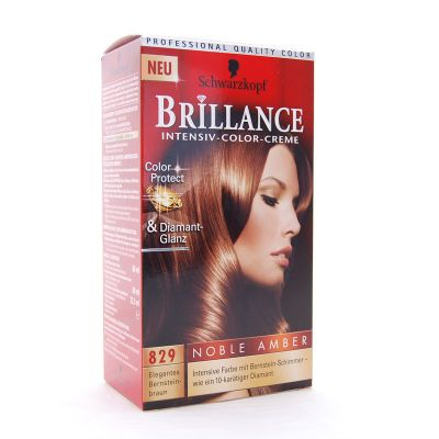 Brillance Coloration 829 Brun Color Protect & Diamant